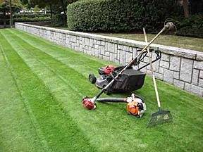 Lawn Mowing Services Davie Fl